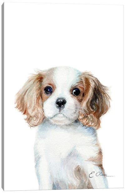 King Charles Cavalier Spaniel Puppy Canvas Art Print