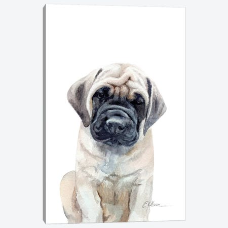 Mastiff Puppy Canvas Print #WLU48} by Watercolor Luv Canvas Artwork