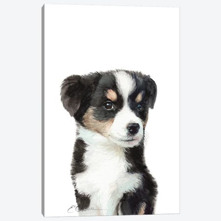 Mini Australian Shepherd Puppy Canvas Print #WLU49} by Watercolor Luv Canvas Wall Art