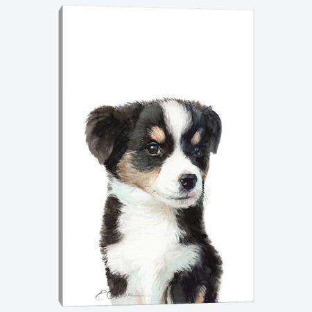Mini Australian Shepherd Puppy Canvas Print #WLU49} by Watercolor Luv Canvas Wall Art