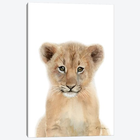 Baby Lion Cub Canvas Print #WLU4} by Watercolor Luv Canvas Wall Art