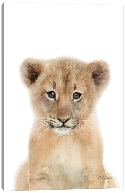 Baby Lion Cub Canvas Art Print