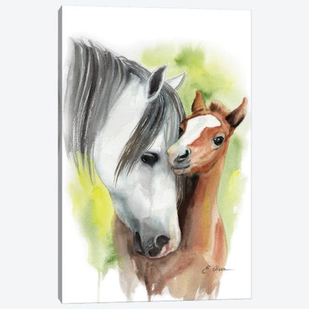 Mother and Baby Horses Canvas Print #WLU59} by Watercolor Luv Canvas Art Print