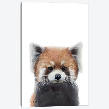 Baby Red Panda Canvas Print #WLU5} by Watercolor Luv Canvas Wall Art