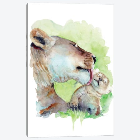 Mother and Baby Lions Canvas Print #WLU60} by Watercolor Luv Canvas Wall Art