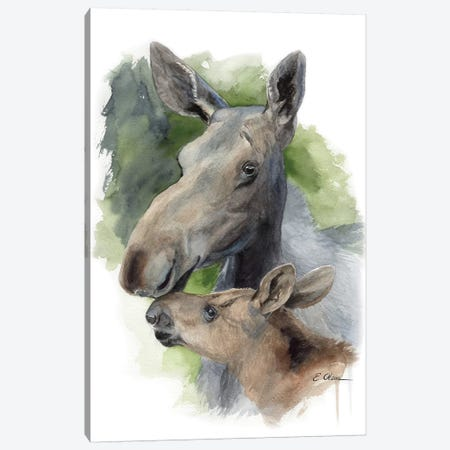 Mother and Baby Moose Canvas Print #WLU61} by Watercolor Luv Canvas Art
