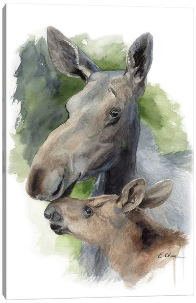 Mother and Baby Moose Canvas Art Print