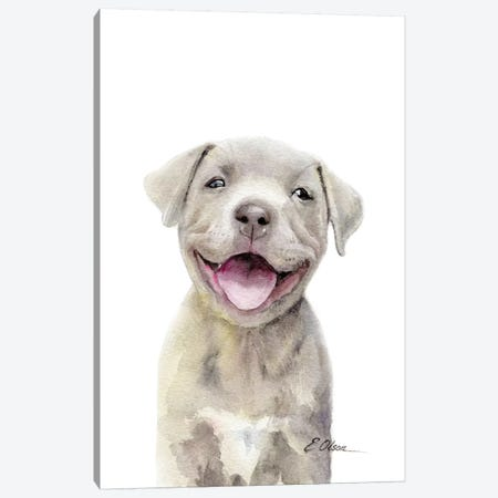 Pitt Bull Puppy Canvas Print #WLU65} by Watercolor Luv Canvas Print