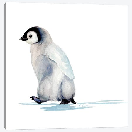 Polar Baby Penguin Canvas Print #WLU66} by Watercolor Luv Art Print