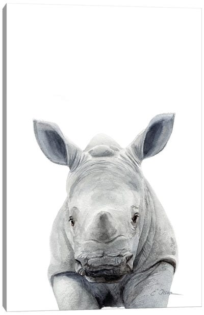 Baby Rhinceros Canvas Art Print
