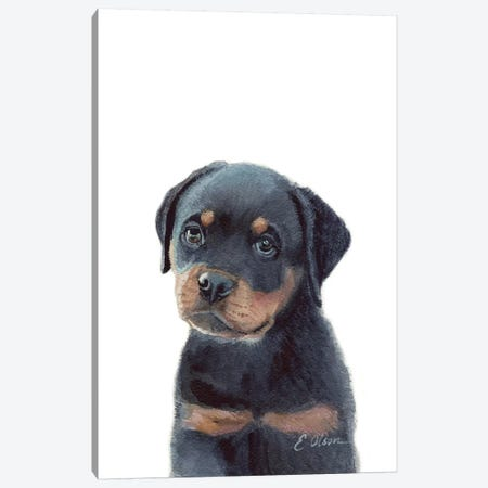 Rottweiler Puppy Canvas Print #WLU70} by Watercolor Luv Art Print