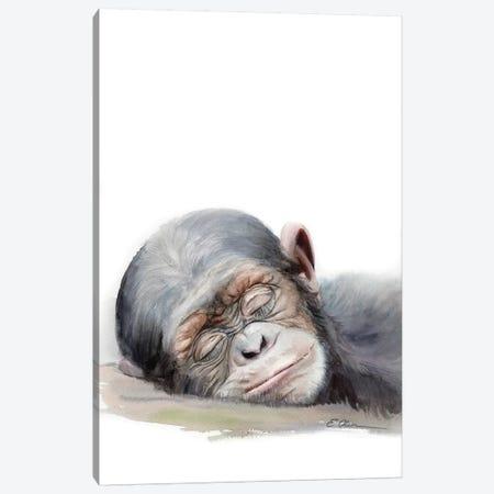 Sleeping Baby Chimpanzee Canvas Print #WLU73} by Watercolor Luv Canvas Print