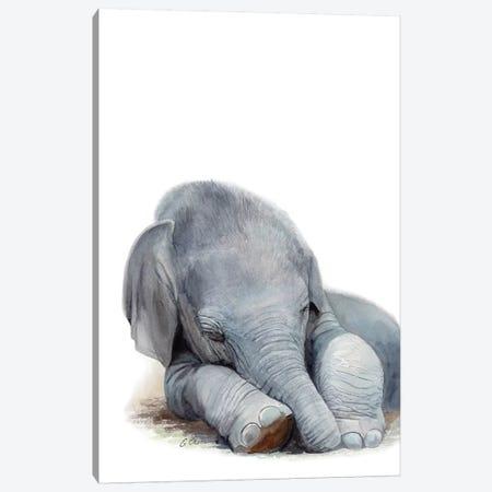 Sleeping Baby Elephant 3-Piece Canvas #WLU74} by Watercolor Luv Canvas Artwork