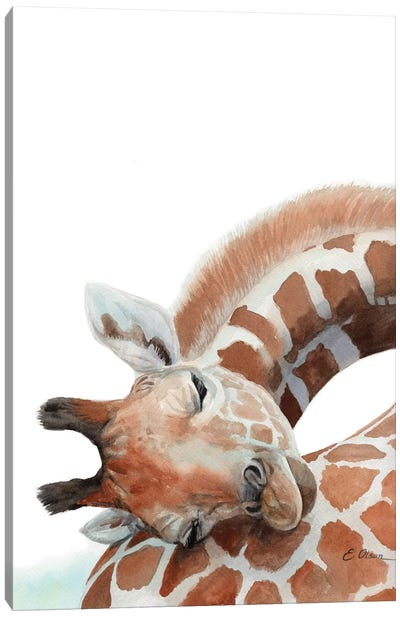 Sleeping Baby Giraffe Canvas Art Print