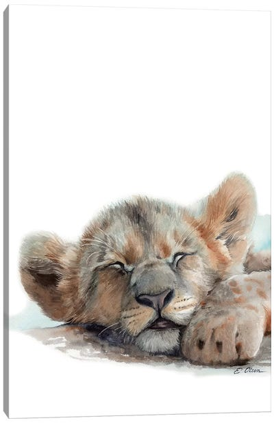 Sleeping Baby Lion Canvas Art Print