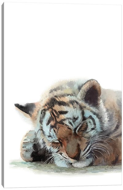 Sleeping Baby Tiger Canvas Art Print