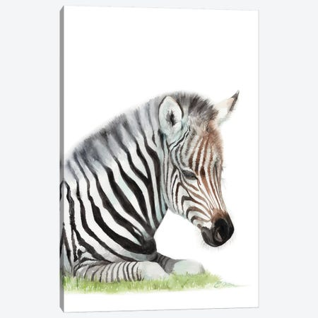 Sleeping Baby Zebra Canvas Print #WLU78} by Watercolor Luv Canvas Art Print