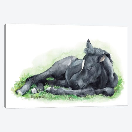 Sleeping Farm Foal Canvas Print #WLU79} by Watercolor Luv Art Print