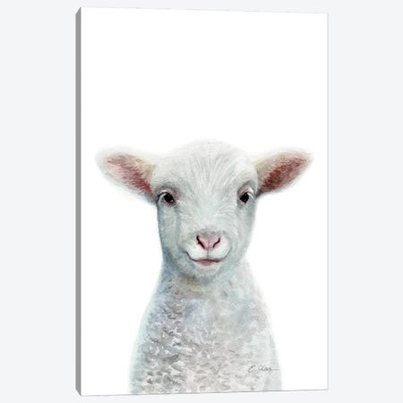 Baby Sheep Canvas Print #WLU7} by Watercolor Luv Canvas Art