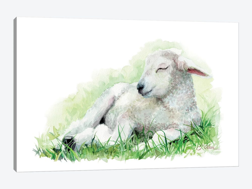 Sleeping Farm Lamb by Watercolor Luv 1-piece Canvas Wall Art
