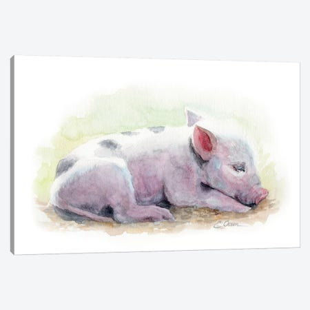 Sleeping Farm Piglet Canvas Print #WLU81} by Watercolor Luv Canvas Artwork