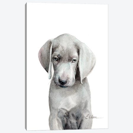 Weimaraner Puppy Canvas Print #WLU87} by Watercolor Luv Canvas Art Print