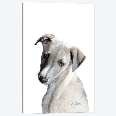 Whippet Puppy Canvas Print #WLU88} by Watercolor Luv Canvas Art