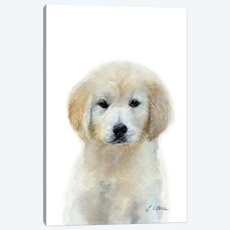 White Golden Retriever Puppy Canvas Print #WLU89} by Watercolor Luv Canvas Art