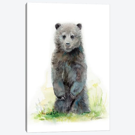 Woodland Baby Bear Cub Canvas Print #WLU90} by Watercolor Luv Art Print