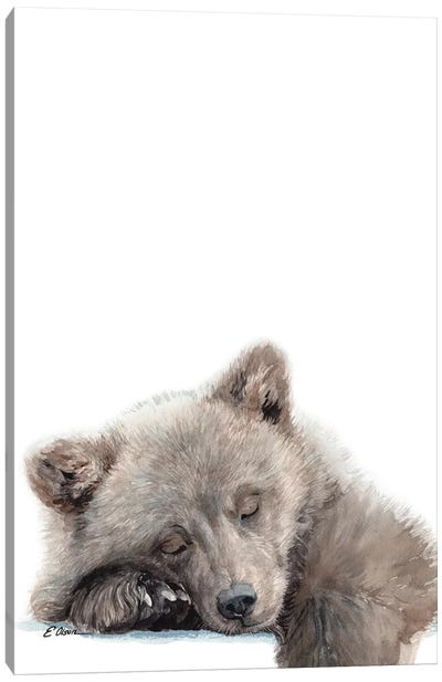 Woodland Sleeping Bear Cub Canvas Art Print
