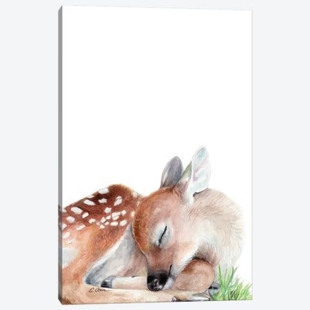 Woodland Sleeping Fawn Canvas Print #WLU92} by Watercolor Luv Canvas Print