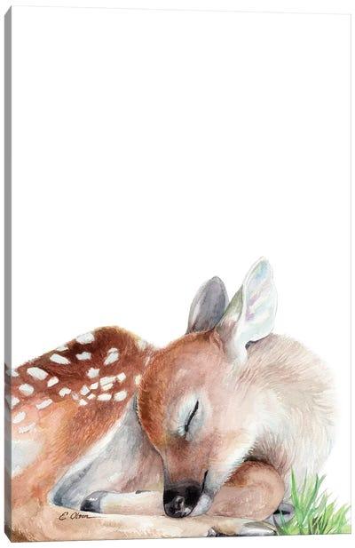 Woodland Sleeping Fawn Canvas Art Print