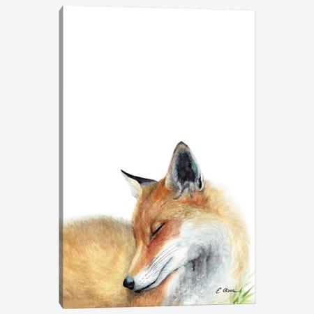 Woodland Sleeping Fox Canvas Print #WLU93} by Watercolor Luv Art Print