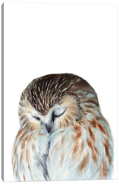 Woodland Sleeping Owl Canvas Art Print