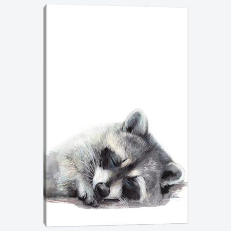 Woodland Sleeping Raccoon Canvas Print #WLU96} by Watercolor Luv Canvas Artwork