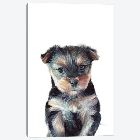 Yorkshire Terrier Puppy Canvas Print #WLU98} by Watercolor Luv Canvas Art Print