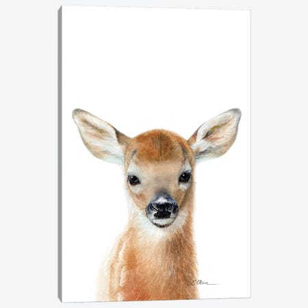 Baby Deer Fawn Canvas Print #WLU99} by Watercolor Luv Art Print