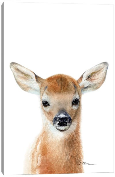 Baby Deer Fawn Canvas Art Print