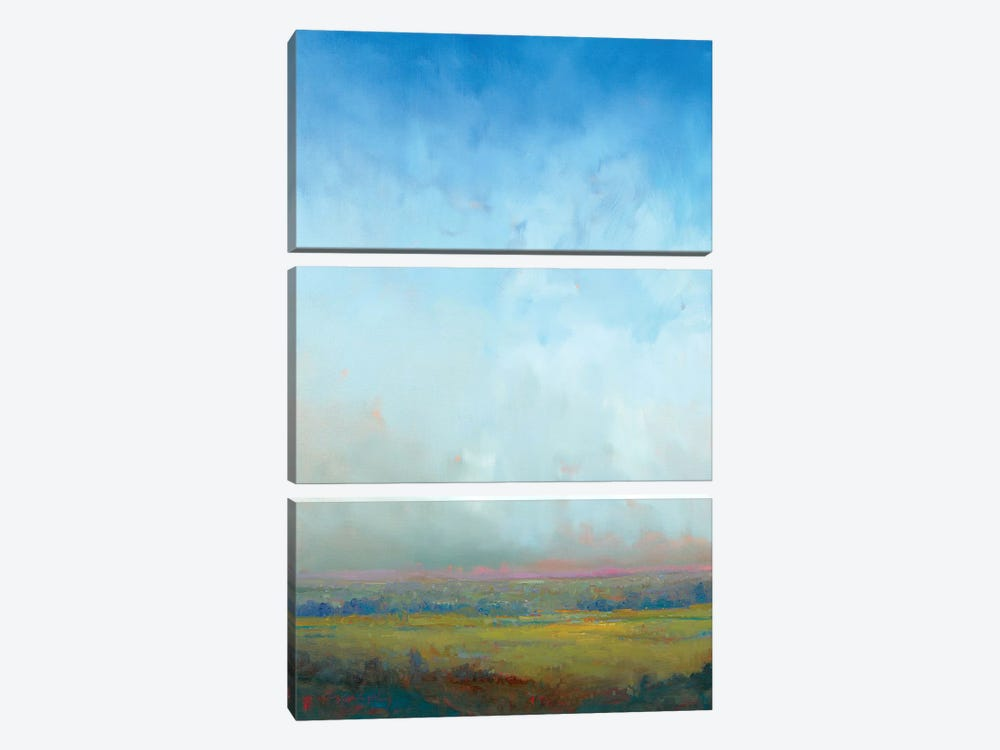 In The Openness by William McCarthy 3-piece Canvas Art