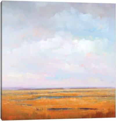 Midday Marsh Canvas Print #WMC5