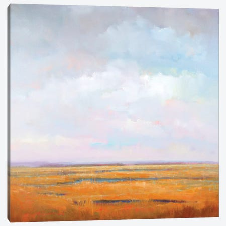Midday Marsh Canvas Print #WMC5} by William McCarthy Canvas Wall Art