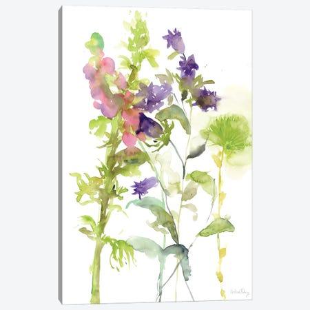 Watercolor Floral Study I Canvas Print #WNG102} by Melissa Wang Canvas Art Print
