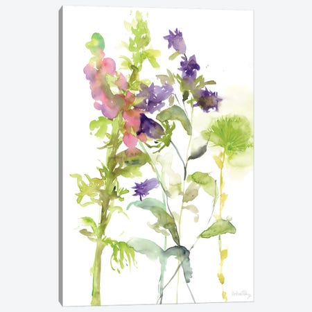 Watercolor Floral Study I Canvas Print #WNG102} by Melissa Wang Canvas Art Print