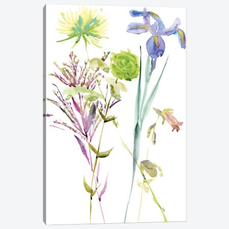 Watercolor Floral Study II 3-Piece Canvas #WNG103} by Melissa Wang Canvas Art Print