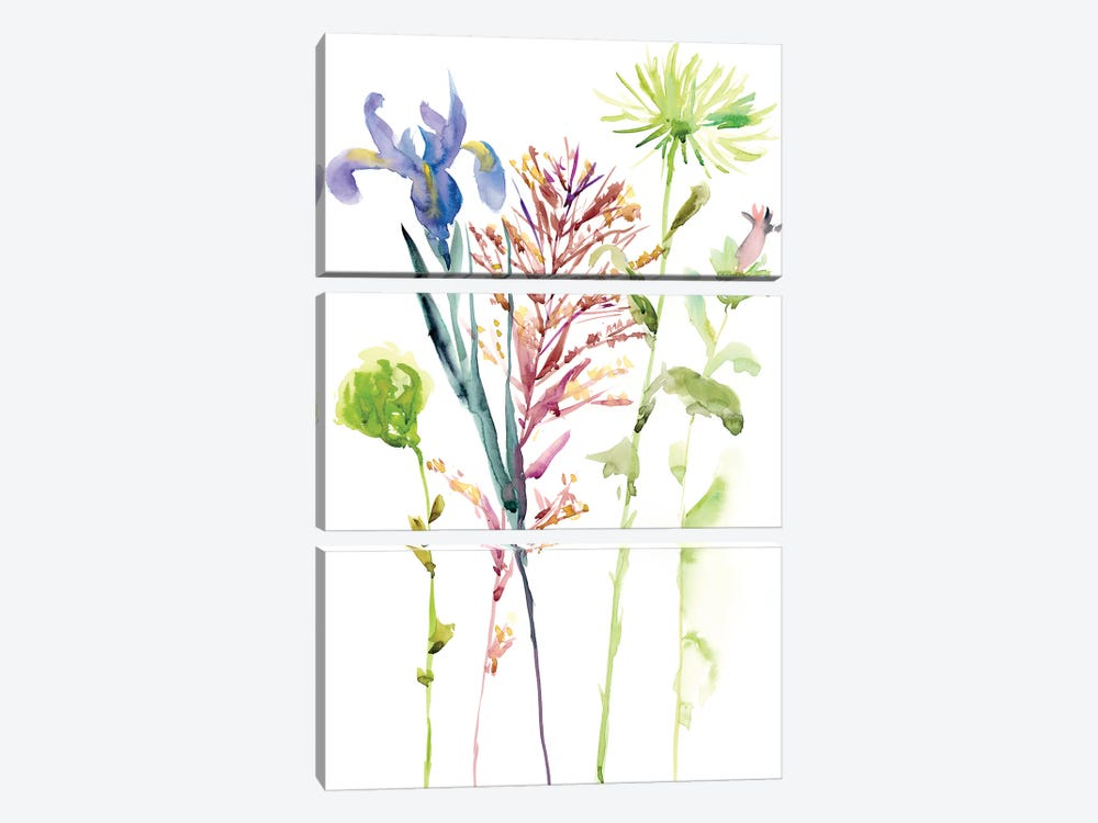 Watercolor Floral Study III by Melissa Wang 3-piece Canvas Wall Art