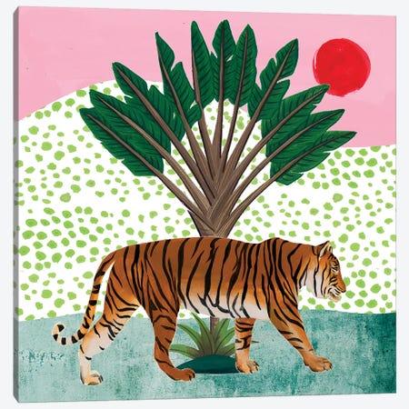 Tiger at Sunrise I Canvas Print #WNG1055} by Melissa Wang Canvas Art