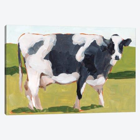 Cow Portrait I Canvas Print #WNG1093} by Melissa Wang Canvas Art Print
