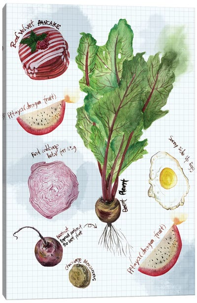 Food Sketches II Canvas Art Print