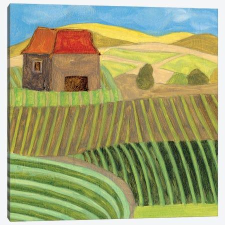 Mountain House II 3-Piece Canvas #WNG1134} by Melissa Wang Art Print