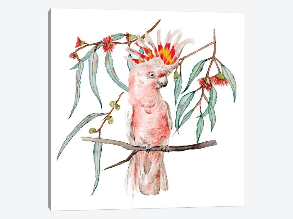 Pink Cockatoo II by Melissa Wang 1-piece Canvas Art